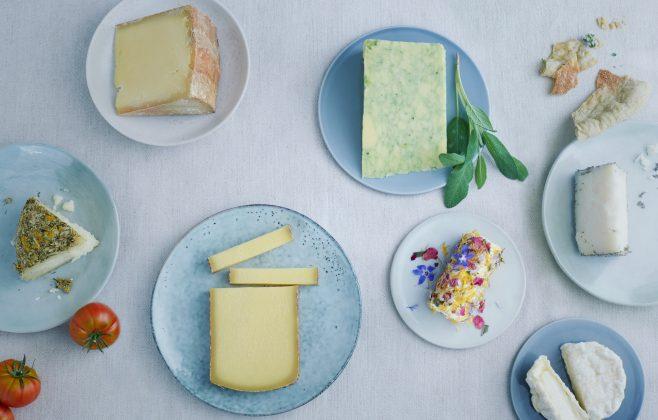 Käsepräsentation mit verschiedenen Käsen