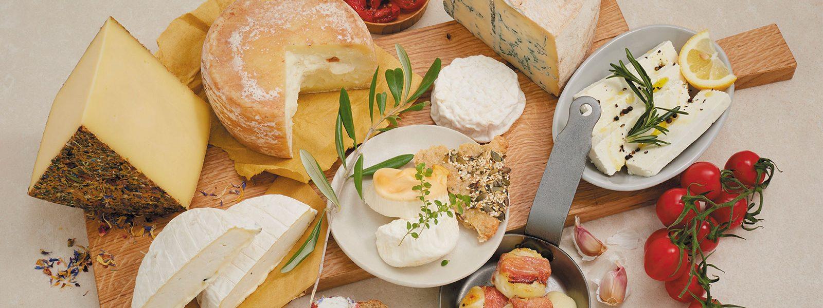 Stilbild mit verschiedenen Käsen