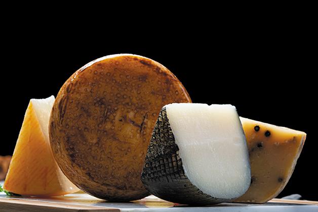 Bild von vier verschiedenen Pecorino Käsen